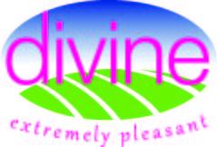 Divine ind.