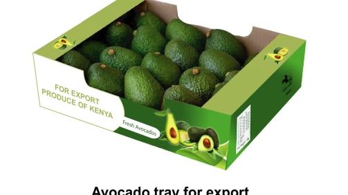 Avocado tray-1
