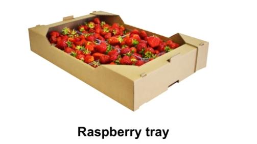 Raspberry tray-1