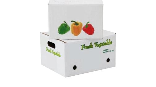 Vegetable box-1