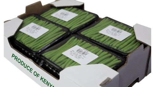 eat-fresh-packed-beans-1